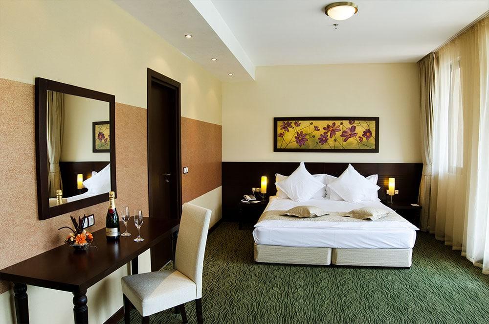 Снимки от Нова Година в хотел РИУ Правец Голф & Спа ****