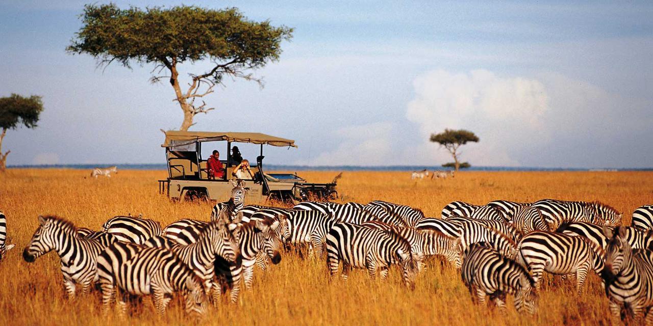 Снимки от Кения от А до Я – Сафари и почивка на брега на океана